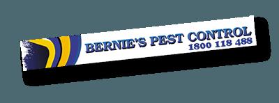 Pest Control Coomera, Mudgeeraba, Kingscliff, Gold Coast